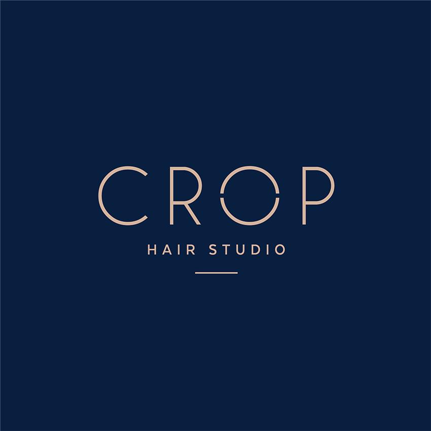 Purestrands_extension_salon_crophairdesign.png