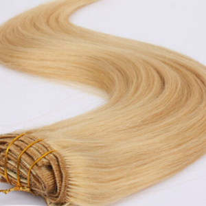 purestrands_clipin_extensions-7pc_full_head_extensions